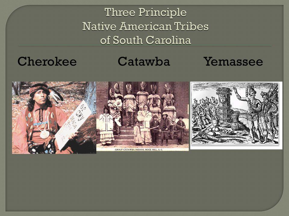 Cherokee Catawba Yemassee
