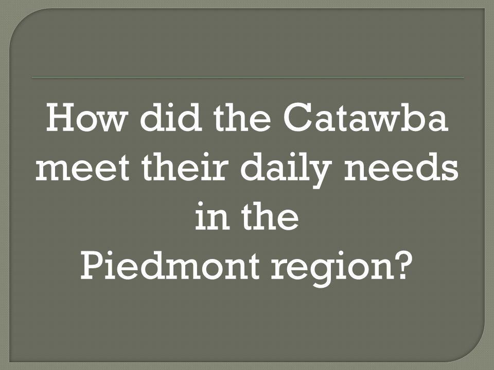How did the Catawba meet their daily needs in the Piedmont region