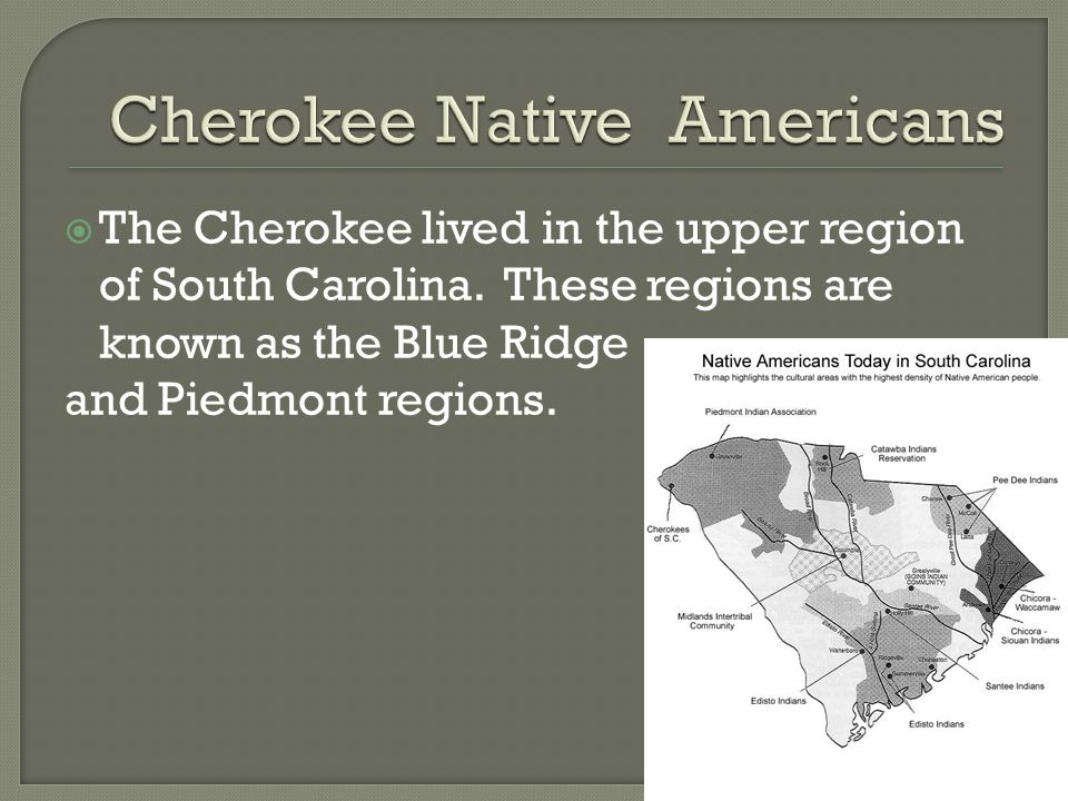  The Cherokee lived in the upper region of South Carolina.