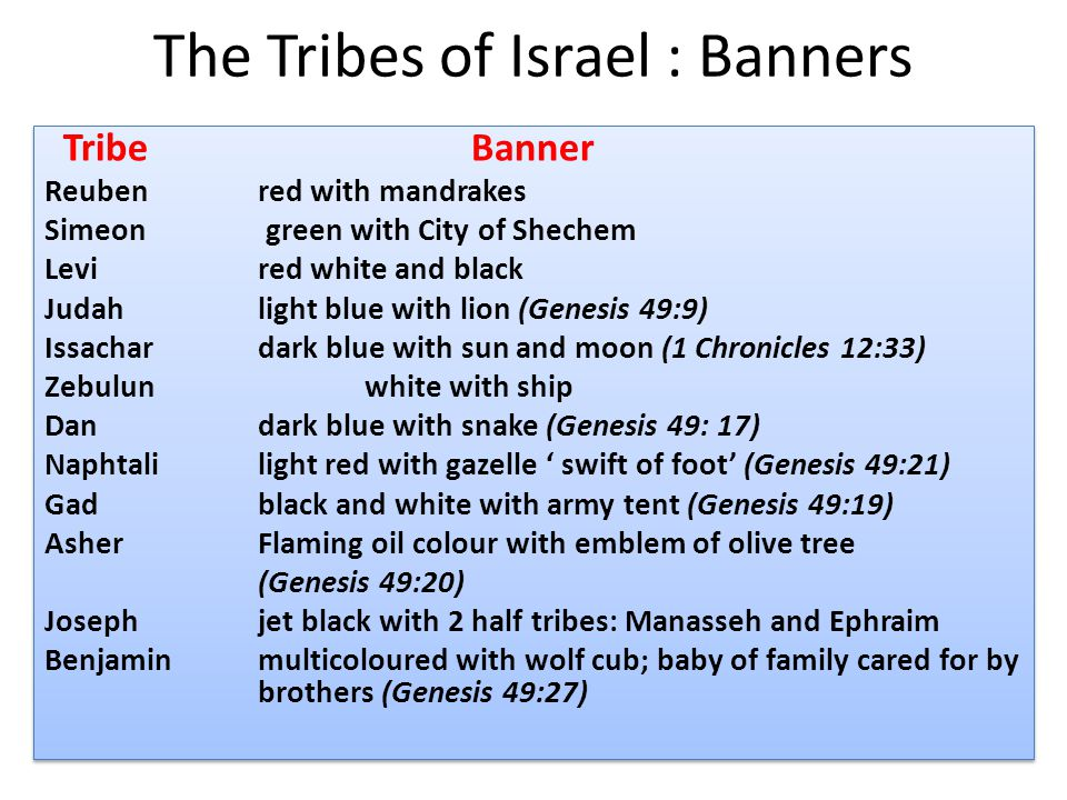 The Tribes of Israel : Banners TribeBanner Reubenred with mandrakes Simeon green with City of Shechem Levired white and black Judahlight blue with lion (Genesis 49:9) Issachardark blue with sun and moon (1 Chronicles 12:33) Zebulunwhite with ship Dandark blue with snake (Genesis 49: 17) Naphtalilight red with gazelle ' swift of foot' (Genesis 49:21) Gadblack and white with army tent (Genesis 49:19) AsherFlaming oil colour with emblem of olive tree (Genesis 49:20) Josephjet black with 2 half tribes: Manasseh and Ephraim Benjaminmulticoloured with wolf cub; baby of family cared for by brothers (Genesis 49:27) TribeBanner Reubenred with mandrakes Simeon green with City of Shechem Levired white and black Judahlight blue with lion (Genesis 49:9) Issachardark blue with sun and moon (1 Chronicles 12:33) Zebulunwhite with ship Dandark blue with snake (Genesis 49: 17) Naphtalilight red with gazelle ' swift of foot' (Genesis 49:21) Gadblack and white with army tent (Genesis 49:19) AsherFlaming oil colour with emblem of olive tree (Genesis 49:20) Josephjet black with 2 half tribes: Manasseh and Ephraim Benjaminmulticoloured with wolf cub; baby of family cared for by brothers (Genesis 49:27)