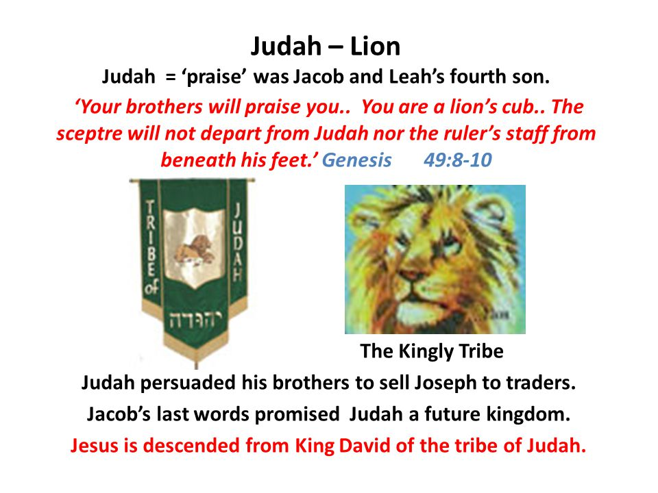 Judah – Lion Judah = 'praise' was Jacob and Leah's fourth son.