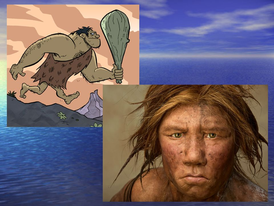 Daily Notes – Chapter 1 PreHistoric Times History : The documented record of what happened.