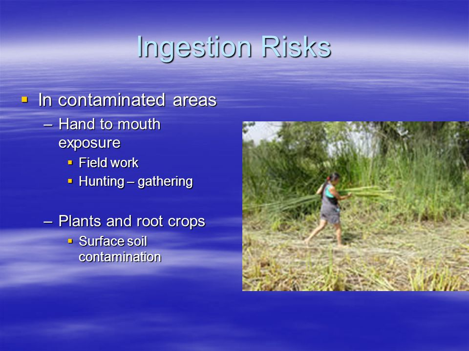 Ingestion Risks  In contaminated areas –Hand to mouth exposure  Field work  Hunting – gathering –Plants and root crops  Surface soil contamination
