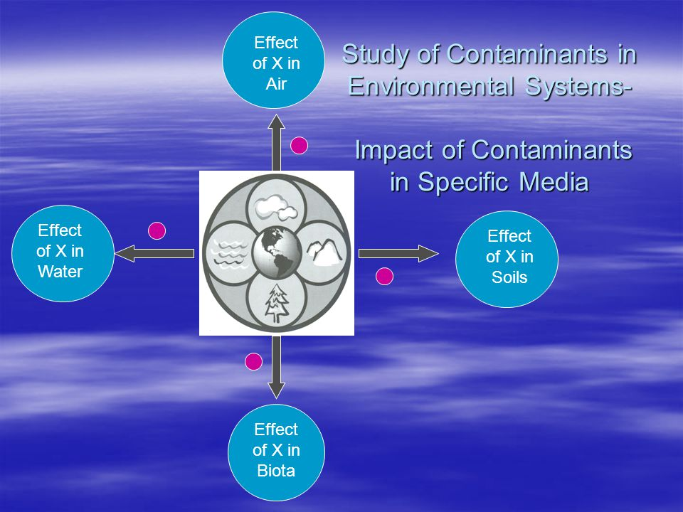 Effect of X in Biota Effect of X in Air Effect of X in Water Effect of X in Soils Study of Contaminants in Environmental Systems- Impact of Contaminants in Specific Media