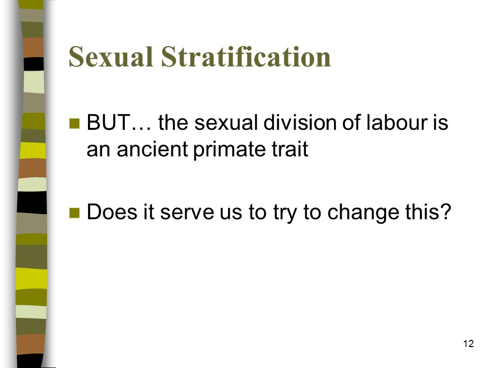12 Sexual Stratification BUT… the sexual division of labour is an ancient primate trait Does it serve us to try to change this