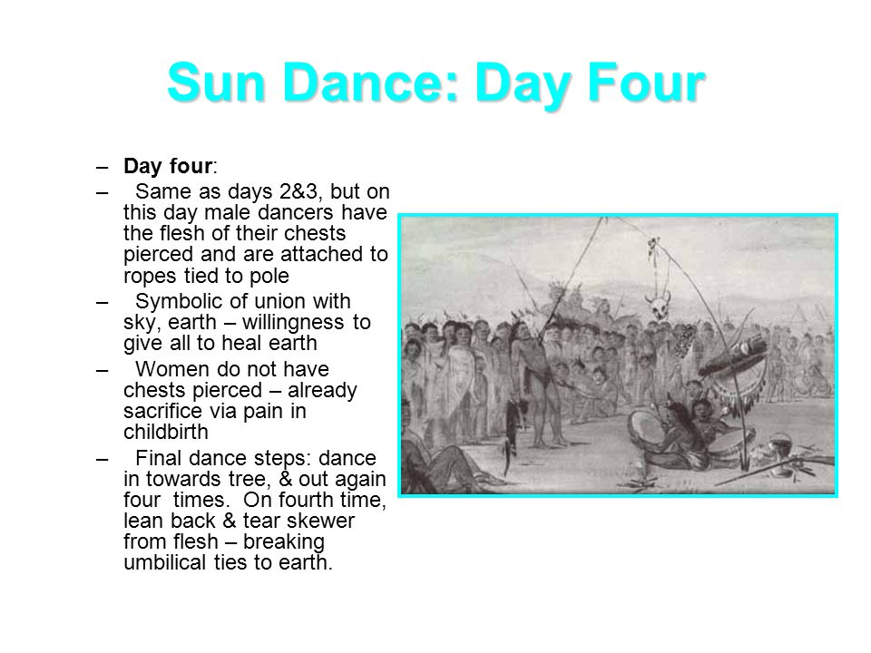 Sun Dance: Day Four –Day four: – Same as days 2&3, but on this day male dancers have the flesh of their chests pierced and are attached to ropes tied to pole – Symbolic of union with sky, earth – willingness to give all to heal earth – Women do not have chests pierced – already sacrifice via pain in childbirth – Final dance steps: dance in towards tree, & out again four times.