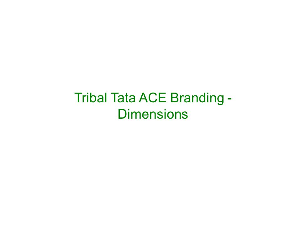 Tribal Tata ACE Branding - Dimensions