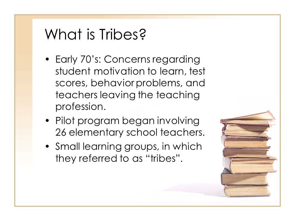 The Tribes Mission To assure the healthy development of every child in the school community so that each has the knowledge, skills, and resiliency to be successful in our rapidly changing world