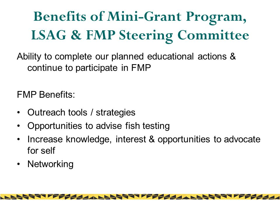 Benefits of Mini-Grant Program, LSAG & FMP Steering Committee Ability to complete our planned educational actions & continue to participate in FMP FMP Benefits: Outreach tools / strategies Opportunities to advise fish testing Increase knowledge, interest & opportunities to advocate for self Networking
