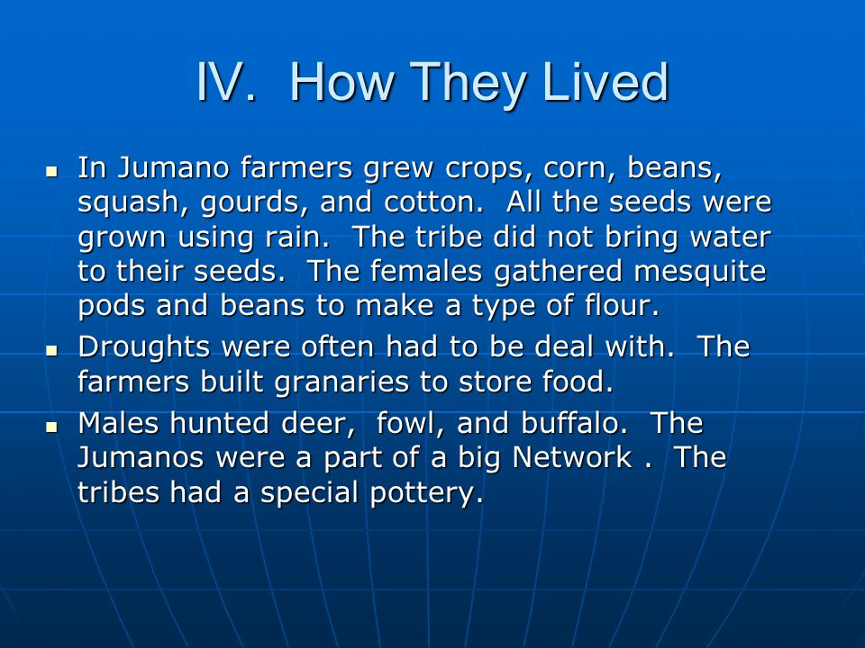 IV. How They Lived In Jumano farmers grew crops, corn, beans, squash, gourds, and cotton. All the seeds were grown using rain. The tribe did not bring