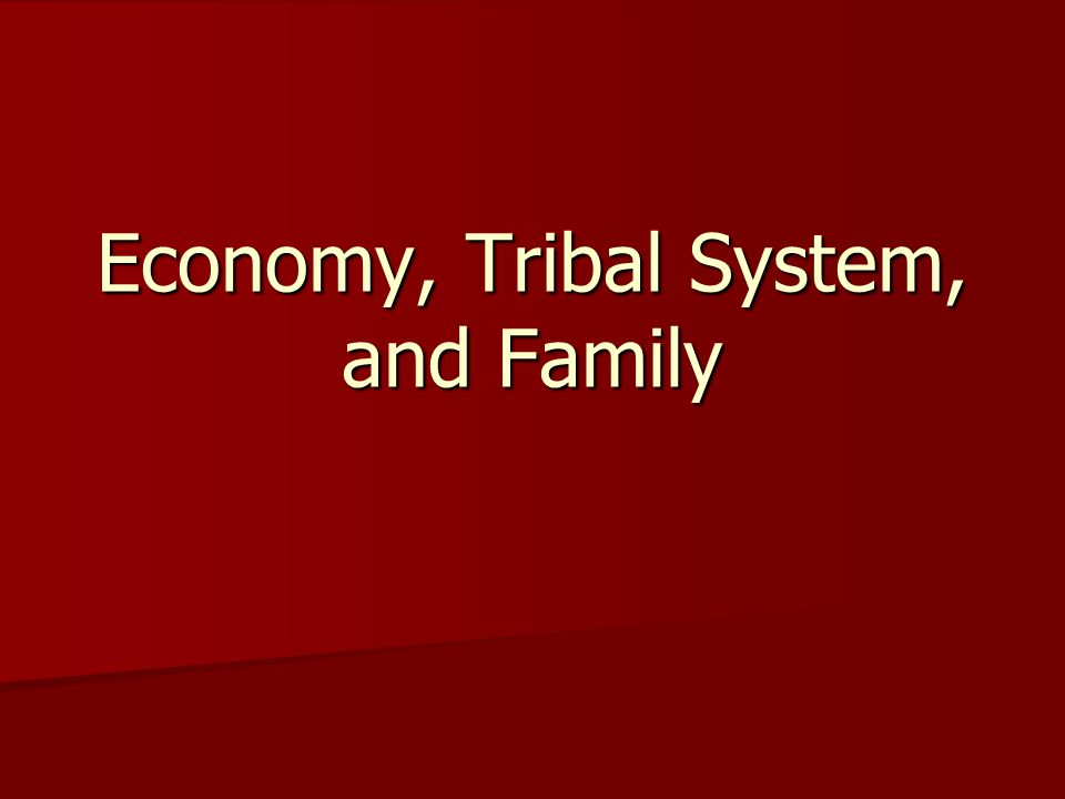 Economy, Tribal System, and Family