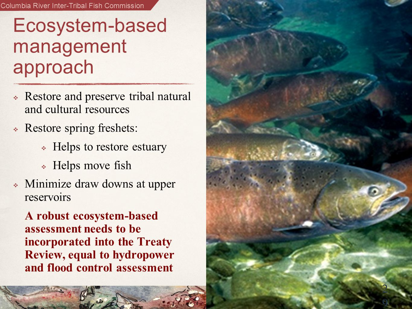 Columbia River Inter-Tribal Fish Commission 2929 Ecosystem-based management approach  Restore and preserve tribal natural and cultural resources  Restore spring freshets:  Helps to restore estuary  Helps move fish  Minimize draw downs at upper reservoirs A robust ecosystem-based assessment needs to be incorporated into the Treaty Review, equal to hydropower and flood control assessment