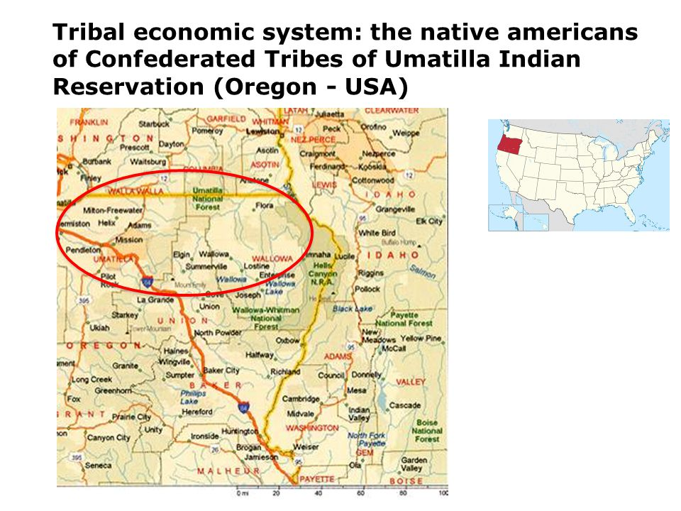 Tribal economic system: the native americans of Confederated Tribes of Umatilla Indian Reservation (Oregon - USA)