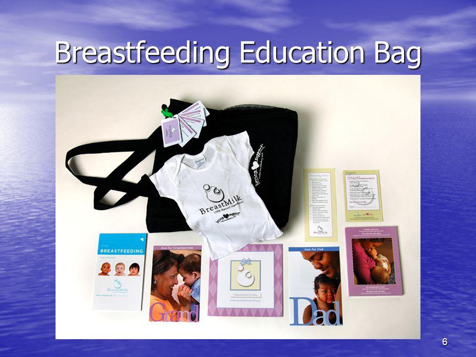 6 Breastfeeding Education Bag