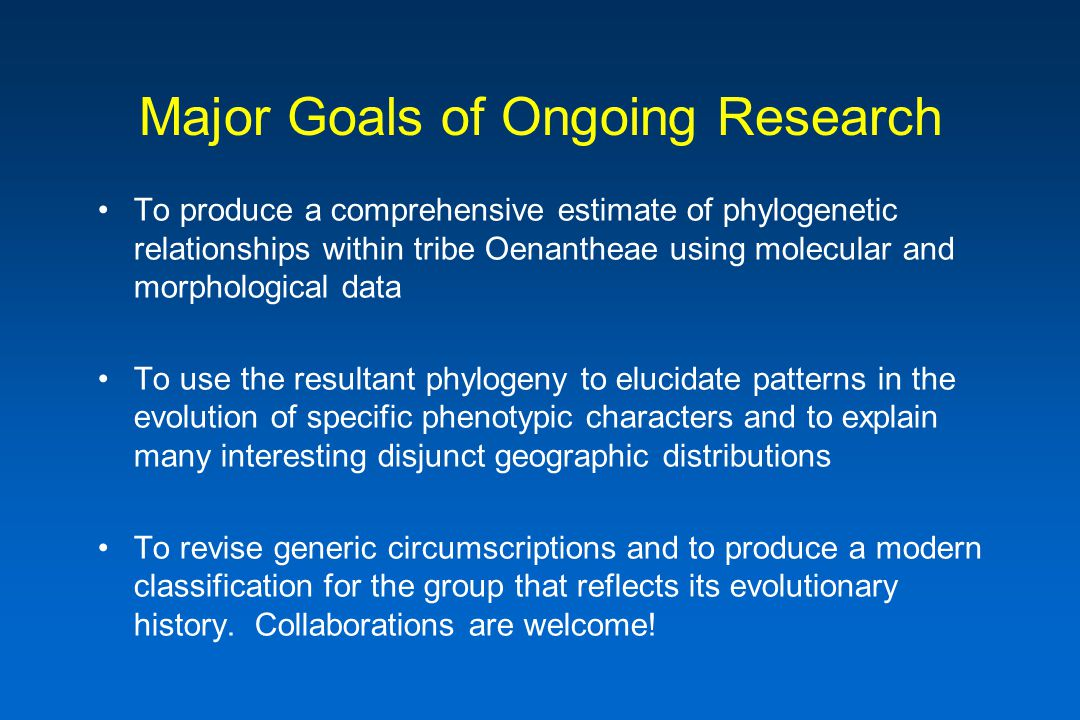 Major Goals of Ongoing Research To produce a comprehensive estimate of phylogenetic relationships within tribe Oenantheae using molecular and morphological data To use the resultant phylogeny to elucidate patterns in the evolution of specific phenotypic characters and to explain many interesting disjunct geographic distributions To revise generic circumscriptions and to produce a modern classification for the group that reflects its evolutionary history.