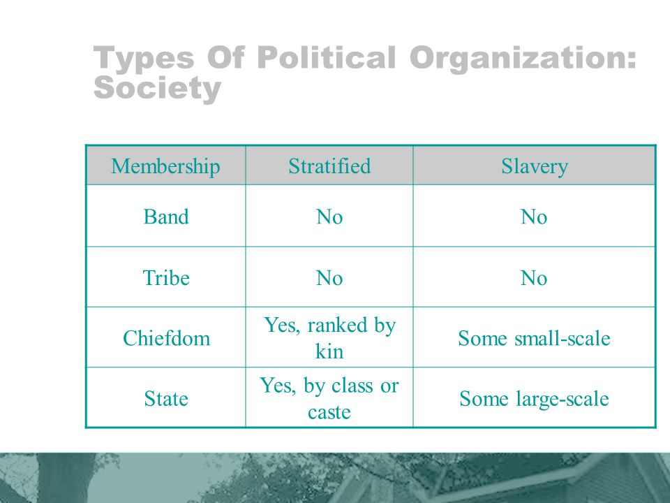 Types Of Political Organization: Society MembershipStratifiedSlavery BandNo TribeNo Chiefdom Yes, ranked by kin Some small-scale State Yes, by class or caste Some large-scale