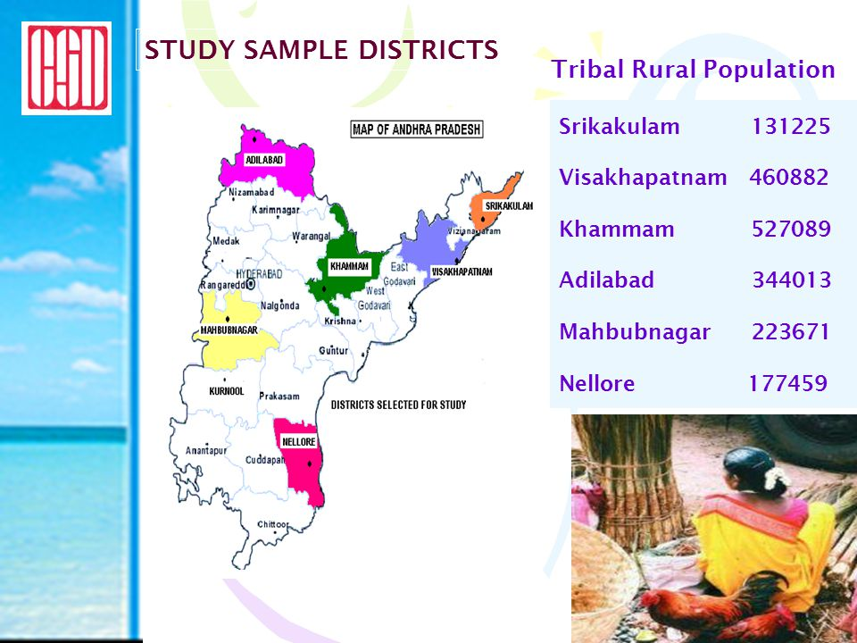 Data pertaining to Types of commodities being sold Prices and Demand-supply aspects Facilities in markets Needs & Experiences of Tribal People Future needs Data collection from  Tribal buyers & sellers  Non Tribal buyers & sellers  Financial Institutions including money lenders  Other market agencies METHODOLOGY