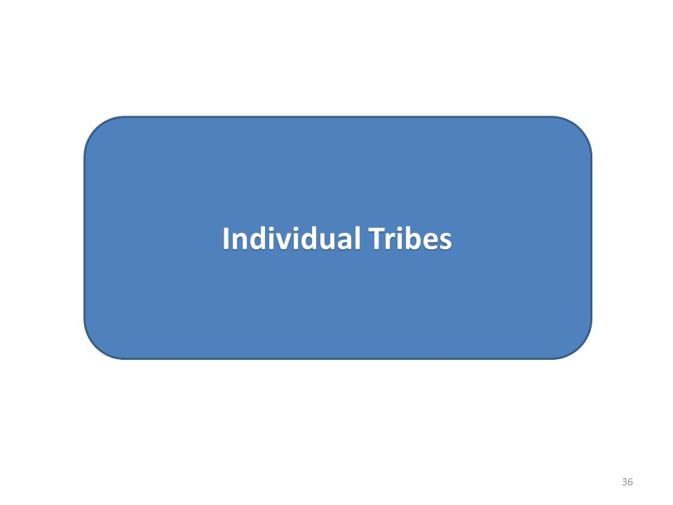 Individual Tribes 36