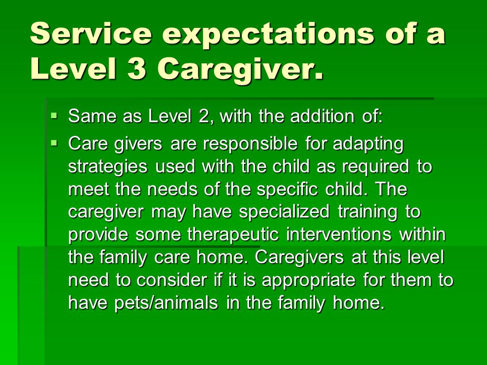 Service expectations of a Level 3 Caregiver.  Same as Level 2, with the addition of:  Care givers are responsible for adapting strategies used with