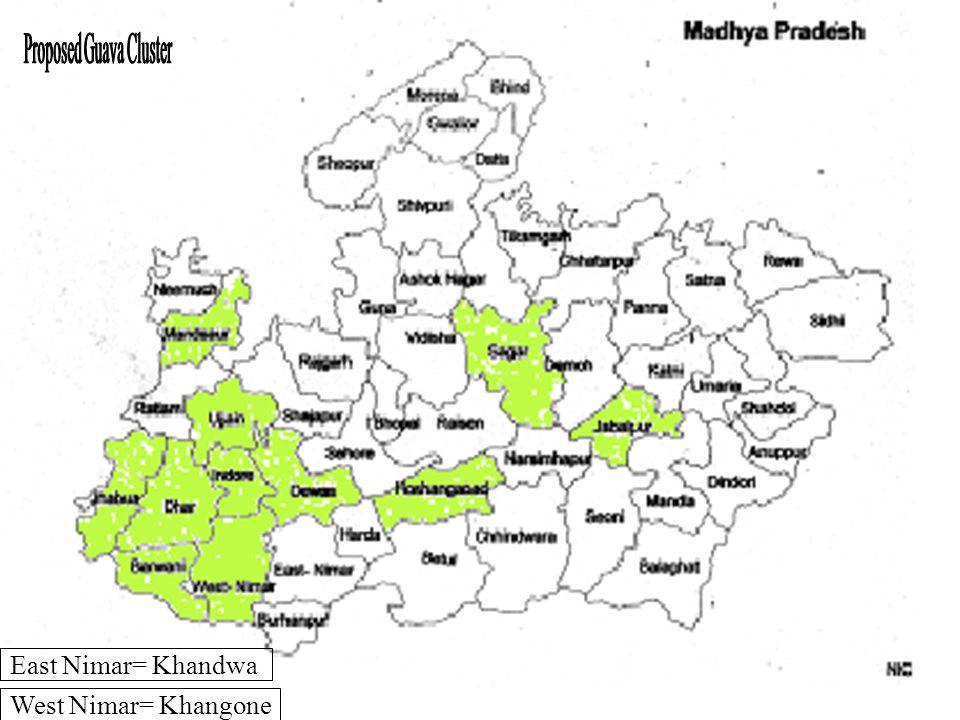 East Nimar= Khandwa West Nimar= Khangone