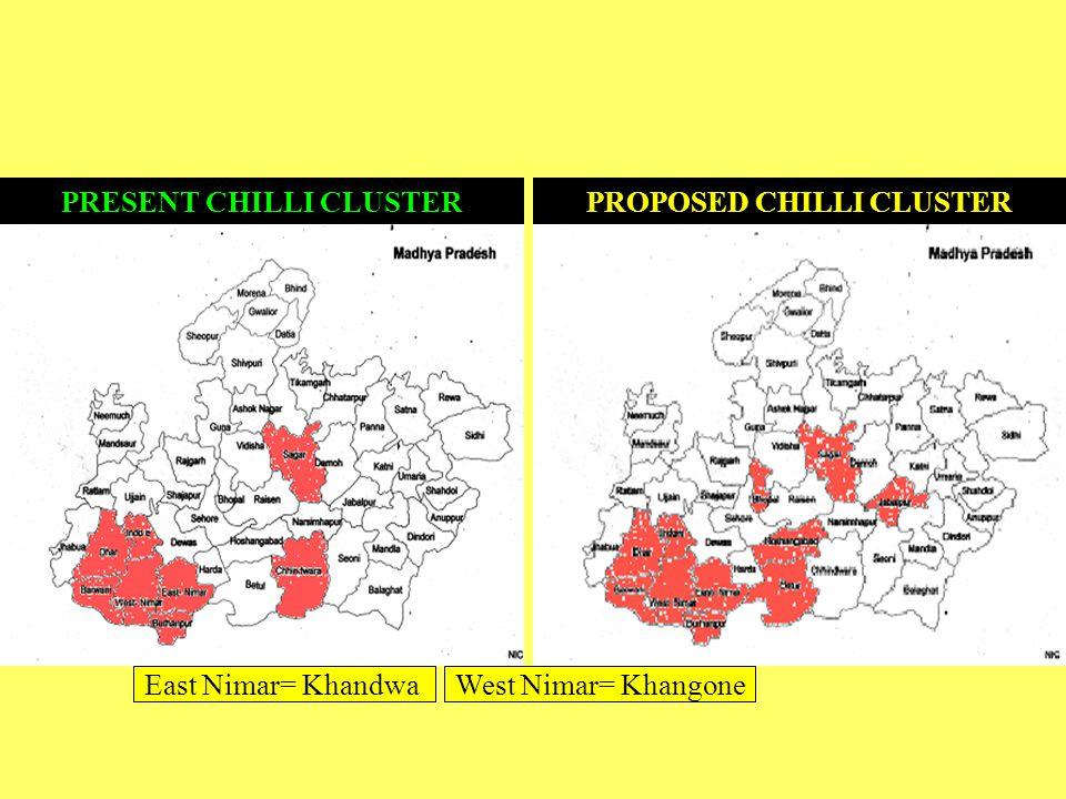 PRESENT CHILLI CLUSTERPROPOSED CHILLI CLUSTER West Nimar= KhangoneEast Nimar= Khandwa