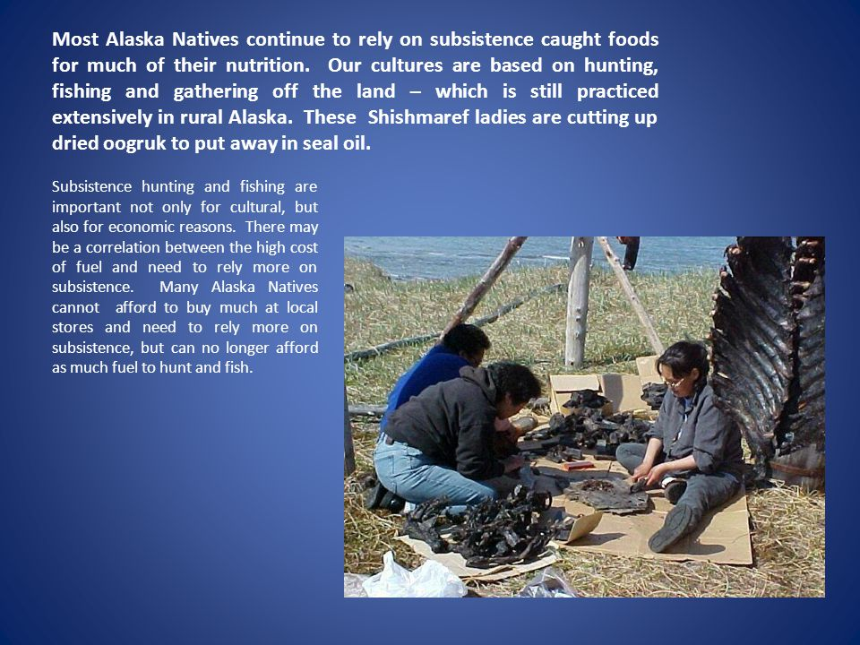 Most Alaska Natives continue to rely on subsistence caught foods for much of their nutrition. Our cultures are based on hunting, fishing and gathering