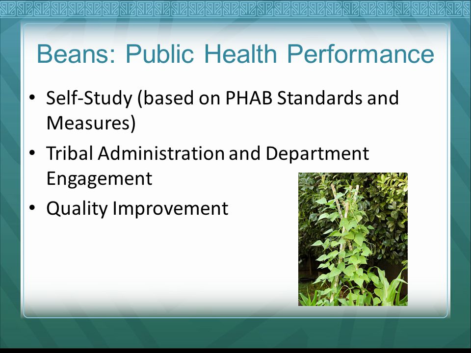 Beans: Public Health Performance Self-Study (based on PHAB Standards and Measures) Tribal Administration and Department Engagement Quality Improvement