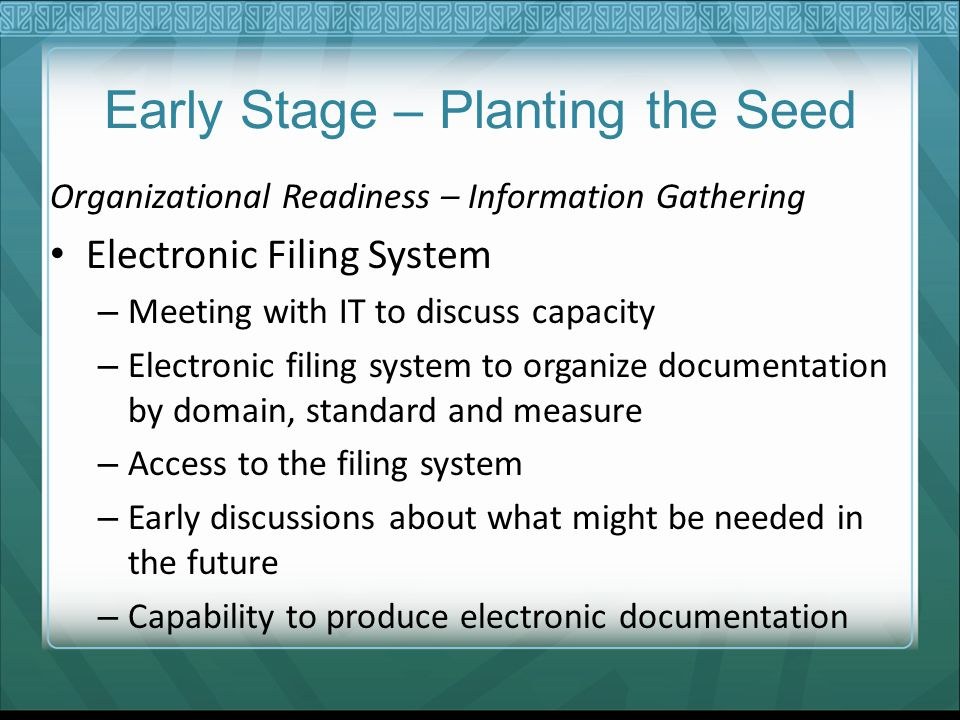 Early Stage – Planting the Seed Organizational Readiness – Information Gathering Electronic Filing System – Meeting with IT to discuss capacity – Electronic filing system to organize documentation by domain, standard and measure – Access to the filing system – Early discussions about what might be needed in the future – Capability to produce electronic documentation