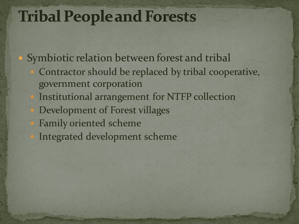Symbiotic relation between forest and tribal Contractor should be replaced by tribal cooperative, government corporation Institutional arrangement for NTFP collection Development of Forest villages Family oriented scheme Integrated development scheme
