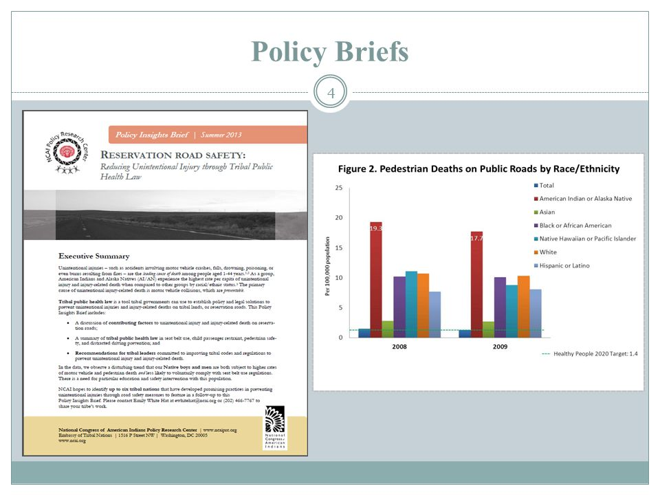4 Policy Briefs