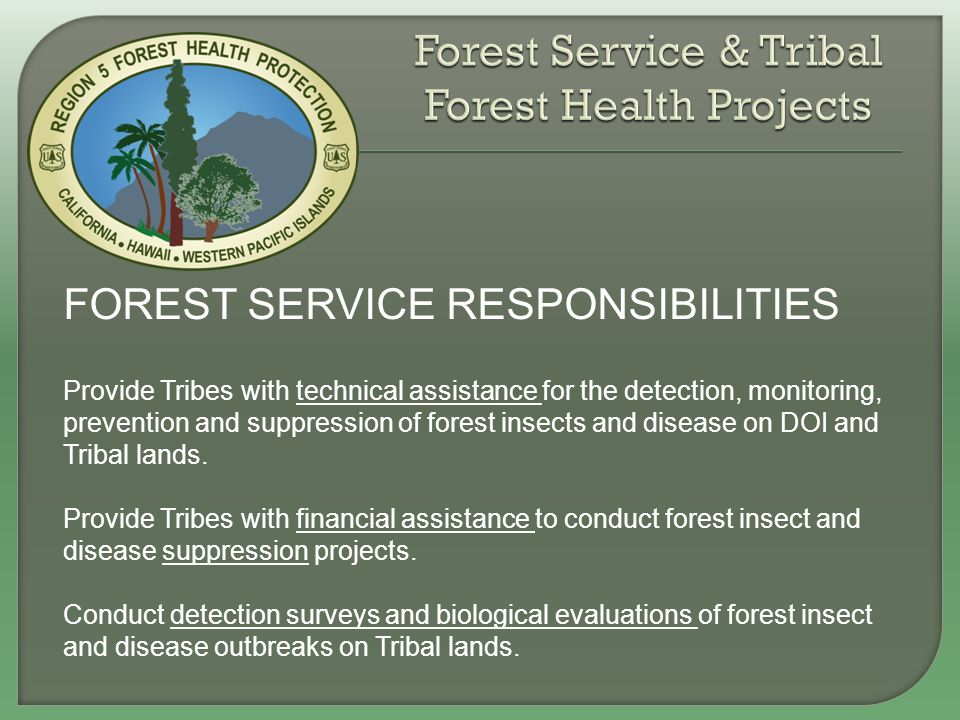 FOREST SERVICE RESPONSIBILITIES Provide Tribes with technical assistance for the detection, monitoring, prevention and suppression of forest insects a