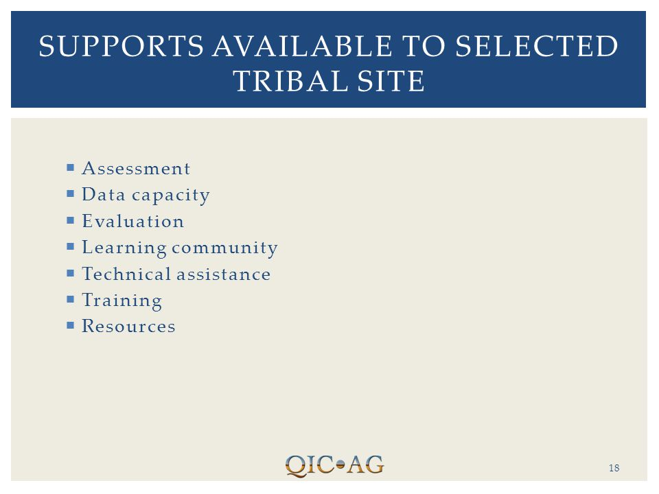 Assessment  Data capacity  Evaluation  Learning community  Technical assistance  Training  Resources 18 SUPPORTS AVAILABLE TO SELECTED TRIBAL SITE