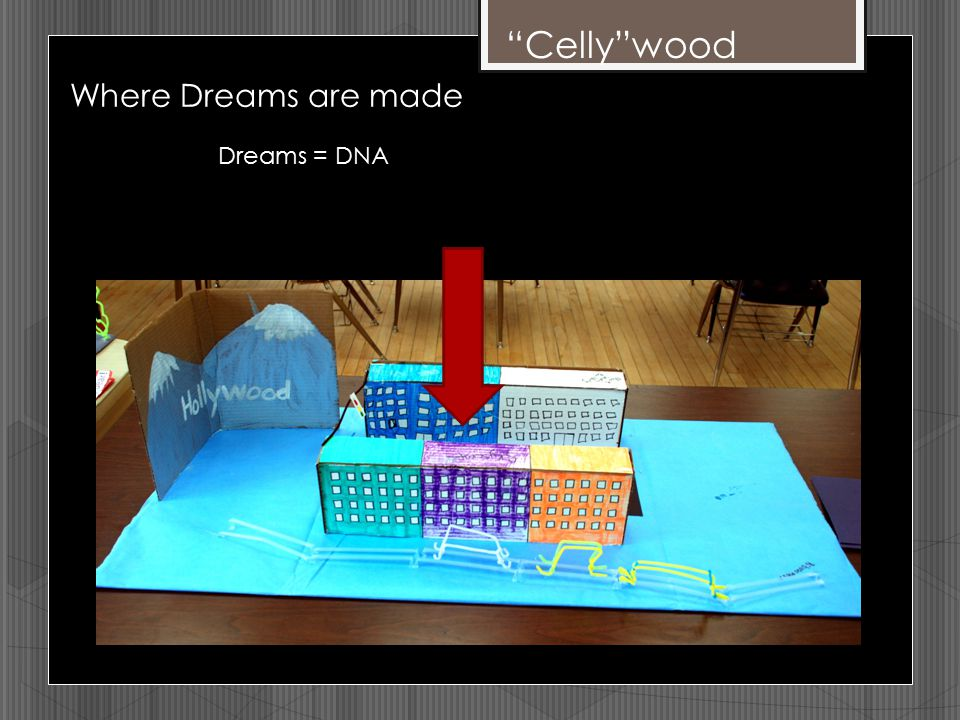 """Celly""wood Where Dreams are made Dreams = DNA"
