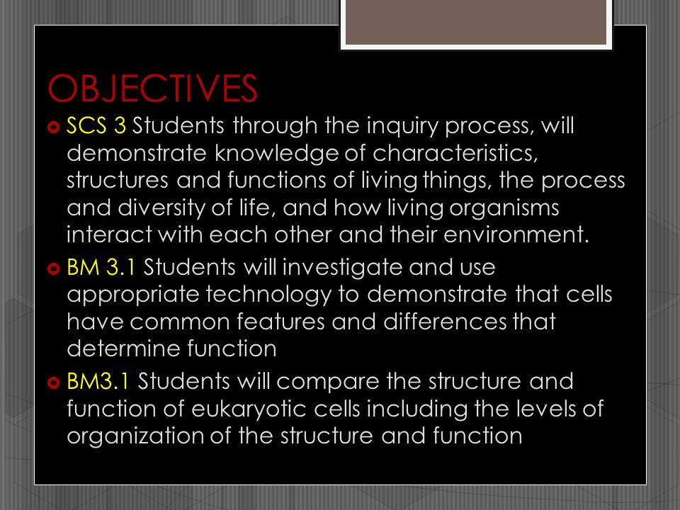OBJECTIVES  SCS 3 Students through the inquiry process, will demonstrate knowledge of characteristics, structures and functions of living things, the