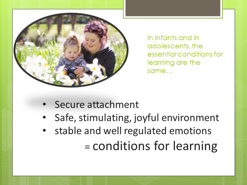 Secure attachment Safe, stimulating, joyful environment stable and well regulated emotions = conditions for learning in infants and in adolescents, the essential conditions for learning are the same…