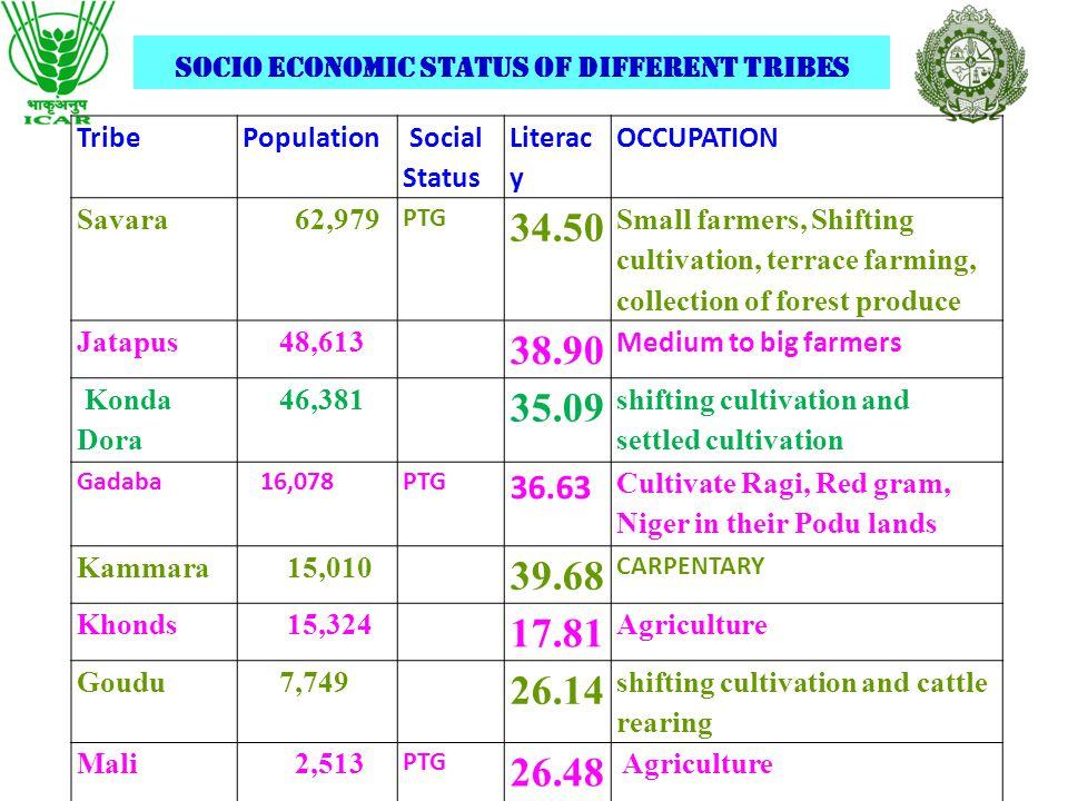 Major tribes in the district SavaraJatapu Gadaba KammaraKhondsMali