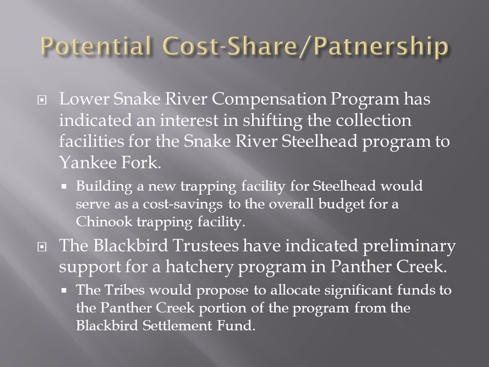  Lower Snake River Compensation Program has indicated an interest in shifting the collection facilities for the Snake River Steelhead program to Yank