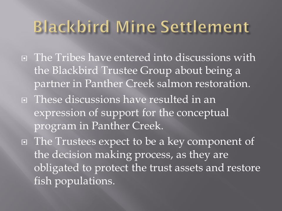  The Tribes have entered into discussions with the Blackbird Trustee Group about being a partner in Panther Creek salmon restoration.  These discuss