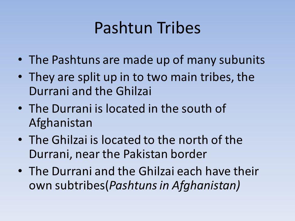 Durrani and Ghilzai subtribes Durrani subtribes: Achakzai, Alizai, Barakzai, Mohammadzai, and Popalzai Ghilzai subtribes: Ahmadzai, Kharruti, Hotaki, Wardak, Jaji, and Jadran There are some other little tribes Afghanistan including the Tani, Mangal, Khugiani, Safi, Mohmand, Afridi, Khatak, Orakzai, Waziri, Mahsud, Chamkani, and the Shinwari, and more(Pashtuns in Afghanistan)