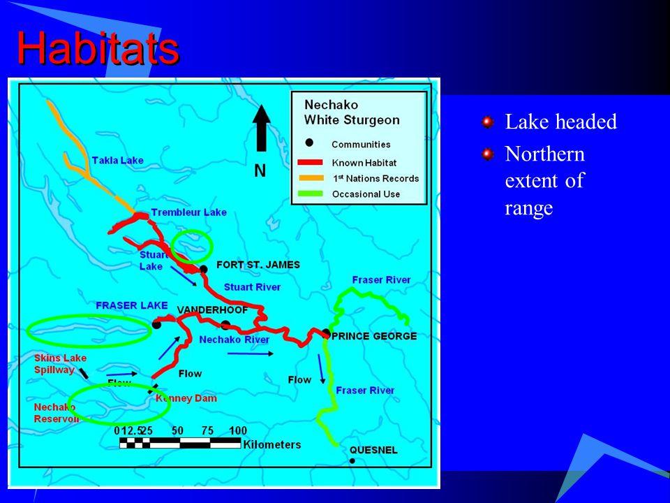 Habitats Lake headed Northern extent of range