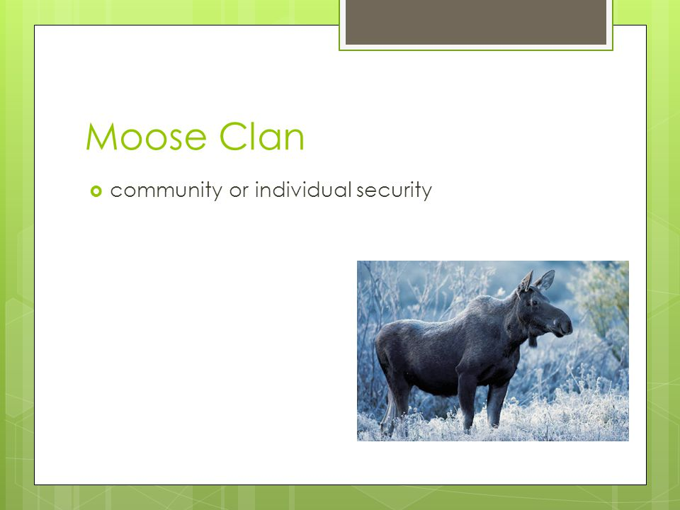 Moose Clan  community or individual security