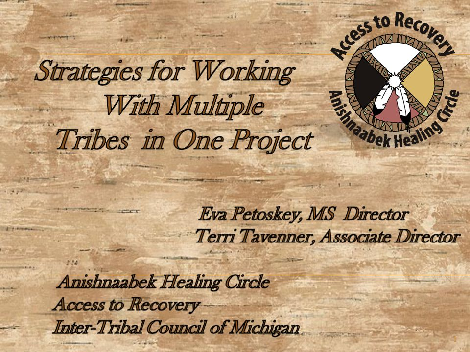 Strategies  Research materials and adopt/modify/develop a curriculum for Recovery Coach certification  Develop a Cultural Competency Module specific to the needs of the Anishnaabek People of the Three Fires (the target population for ATR).