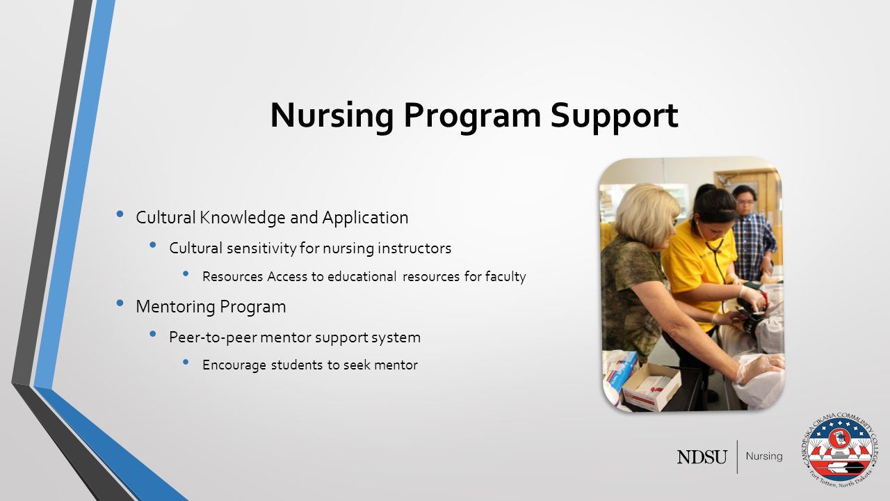Nursing Program Support Cultural Knowledge and Application Cultural sensitivity for nursing instructors Resources Access to educational resources for