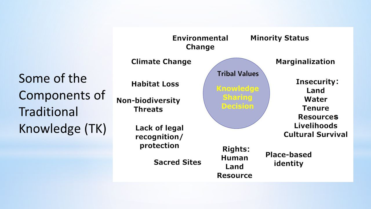 Some of the Components of Traditional Knowledge (TK)