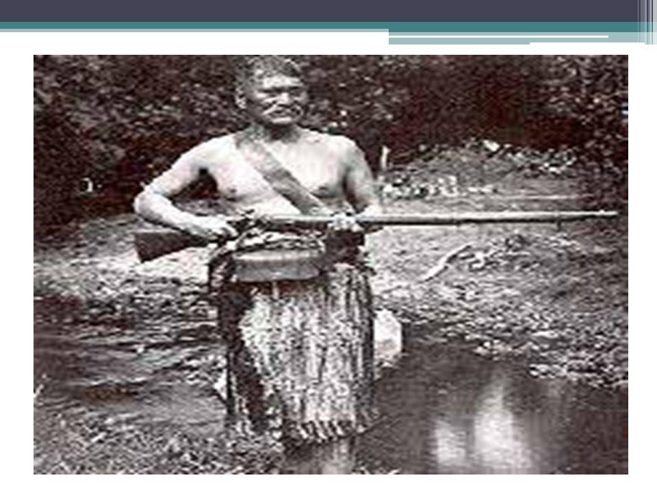 Hongi and Missionaries Thomas Kendall, British missionary, established a firm and lasting friendship with Hongi Hika.