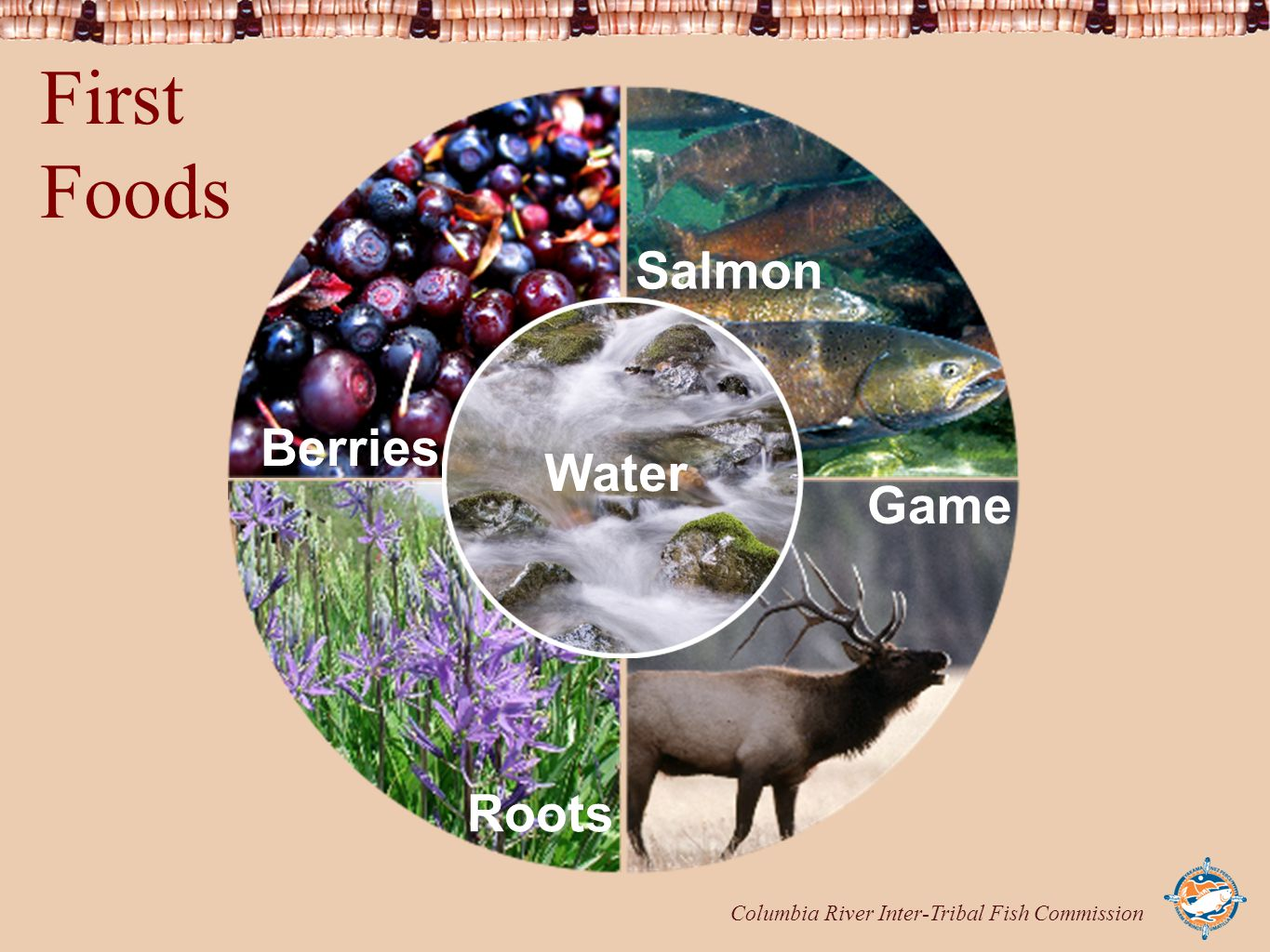 Columbia River Inter-Tribal Fish Commission Water Salmon Game Roots Berries First Foods