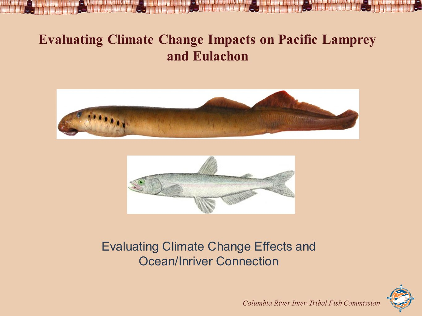 Columbia River Inter-Tribal Fish Commission Evaluating Climate Change Impacts on Pacific Lamprey and Eulachon Evaluating Climate Change Effects and Ocean/Inriver Connection