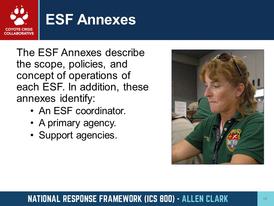 ESF Annexes The ESF Annexes describe the scope, policies, and concept of operations of each ESF. In addition, these annexes identify: An ESF coordinat