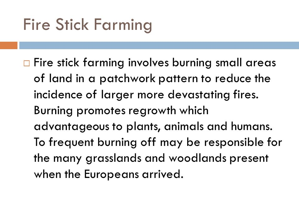 Fire Stick Farming  Fire stick farming involves burning small areas of land in a patchwork pattern to reduce the incidence of larger more devastating fires.