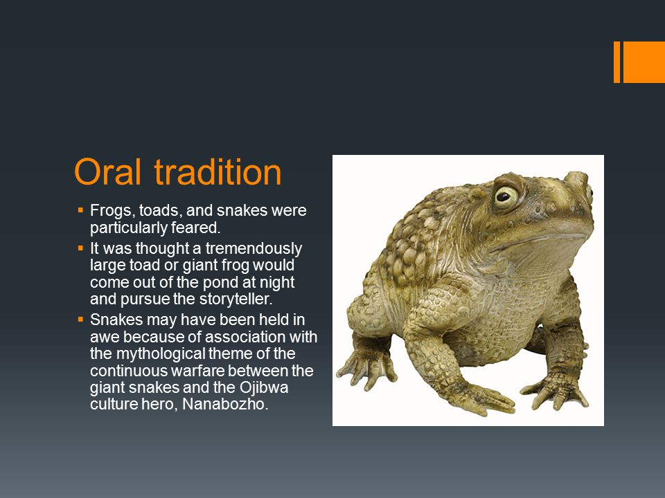 Oral tradition  Frogs, toads, and snakes were particularly feared.